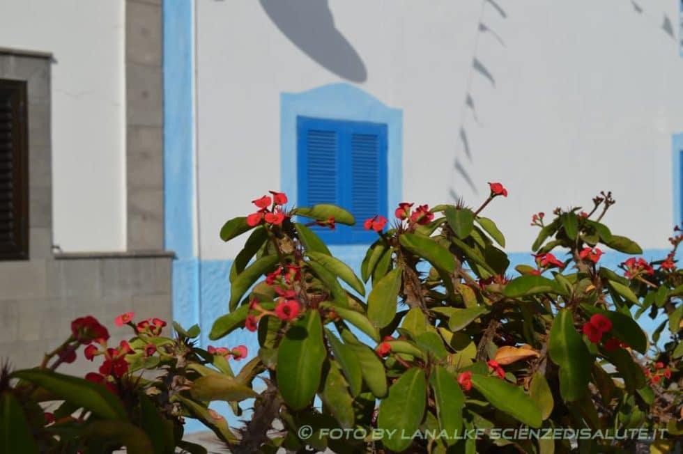 Gran-Canaria-un-angolo-di-paradiso-by-LKF-foto-5
